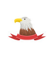 american bald eagle usa emblem with bird and vector image vector image