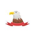 american bald eagle usa emblem with bird vector image