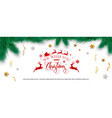 christmas decorations with fir tree holly berries vector image vector image