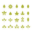 set green leaves isolated on white background vector image vector image