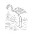 adult coloring bookpage a cute flamingo image for vector image