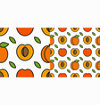 apricot fruit pattern linear pattern slice vector image vector image