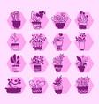 bright icon set of housplants in potspurple vector image vector image