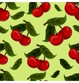 bright jucy fresh cherry fruit Cherries vector image vector image