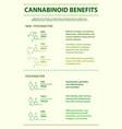 cannabinoid benefits vertical infographic vector image vector image