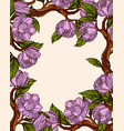 magnolia flowers frame vector image