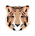 Orange low poly tiger vector image