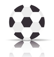 soccer ball design vector image