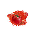 whole and sliced tomatoes in a vegetable juice vector image