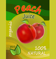 a packing of juice of red p vector image vector image