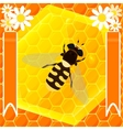 bee and honey vector image vector image