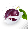 Blue plum in a milk splash on a transparent vector image vector image