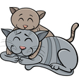cat and kitten cartoon vector image