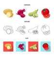 design of vegetable and fruit sign set of vector image