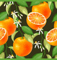 seamless pattern with orange vector image vector image