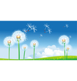 spring landscape with dandelions vector image vector image