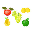 summer juicy fruit vector image