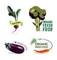 Vegan set of design elements vector image