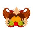 cornucopias with grapes and a pumpkin vector image vector image