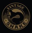 king cobra shadow gold snake mascot logo on vector image
