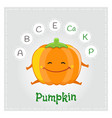 pumpkin vegetable vitamins and minerals vector image vector image
