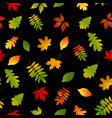 seamless pattern with set autumn yellow green red vector image vector image