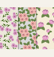 set floral style with petals and leaves background vector image vector image