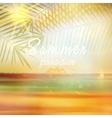 Summer calligraphic design template vector image