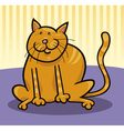 yellow cat sitting on the floor vector image vector image