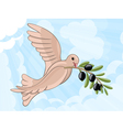 Pigeon with olive branch vector image