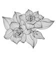 decorative gardenia vector image vector image
