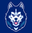 husky dog mascot head vector image vector image