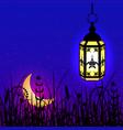 ramadan kareem lantern moon and night sky vector image