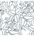 seamless pattern with lily flowers vector image