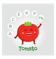 tomato vegetable vitamins and minerals vector image vector image