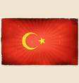 vintage turkey flag poster background vector image vector image