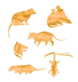 watercolor silhouettes of a opossum vector image vector image