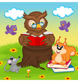 owl reading book for animals vector image