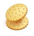 crisp cookies snacks isolated vector image vector image
