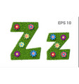 letter zz with a texture of grass and flowers vector image vector image