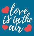 love is in the air label font with brush vector image