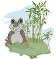 Panda and bamboo wood vector image vector image