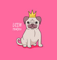pug little princess cute dog in crown vector image