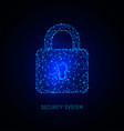 secure digital space programming protection vector image vector image