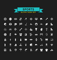 sports glyph icon set vector image vector image