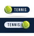tennis toggle switch buttons with basketball ball vector image vector image