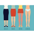 Various skirts and underwear vector image