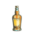 color hand drawn whisky bottle with blank label vector image vector image