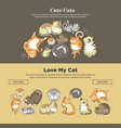 cute cats and kittens pets playing or posing vector image