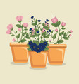 cute flowers flowers with leaves inside plant pot vector image